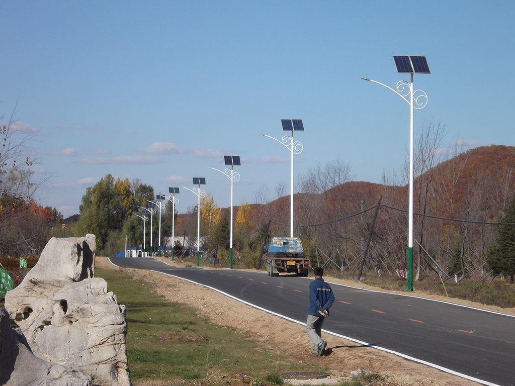 河南LED路灯花蕊造型
